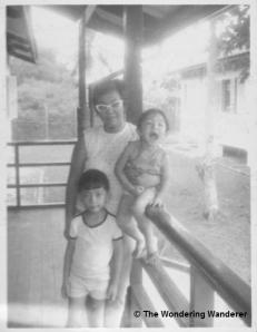 Mata Ikan Nov 1971