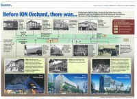 Straits Times 20090824