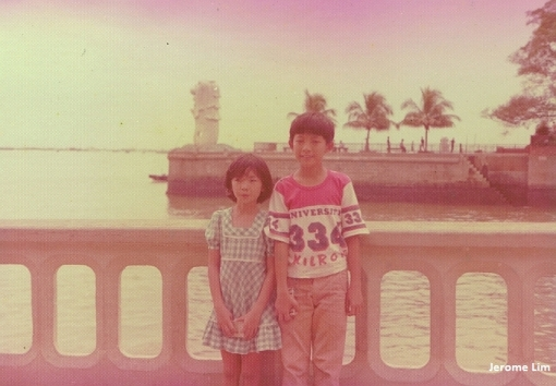 The View from the Esplanade towards the open sea at the mouth of the Singapore River in 1976. The Merlion in the background, is seen at its original location at the mouth of the river.