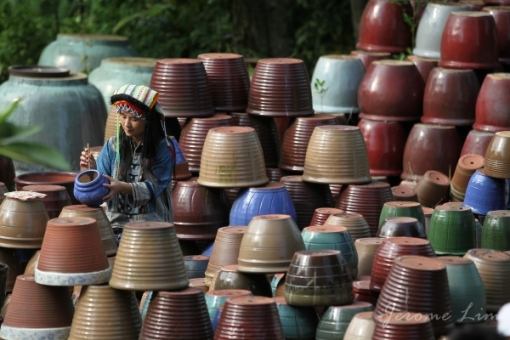 The Thow Kwang Pottery Jungle is built around the Thow Kwang Dragon Kiln which the Tan family has operated since 1965.