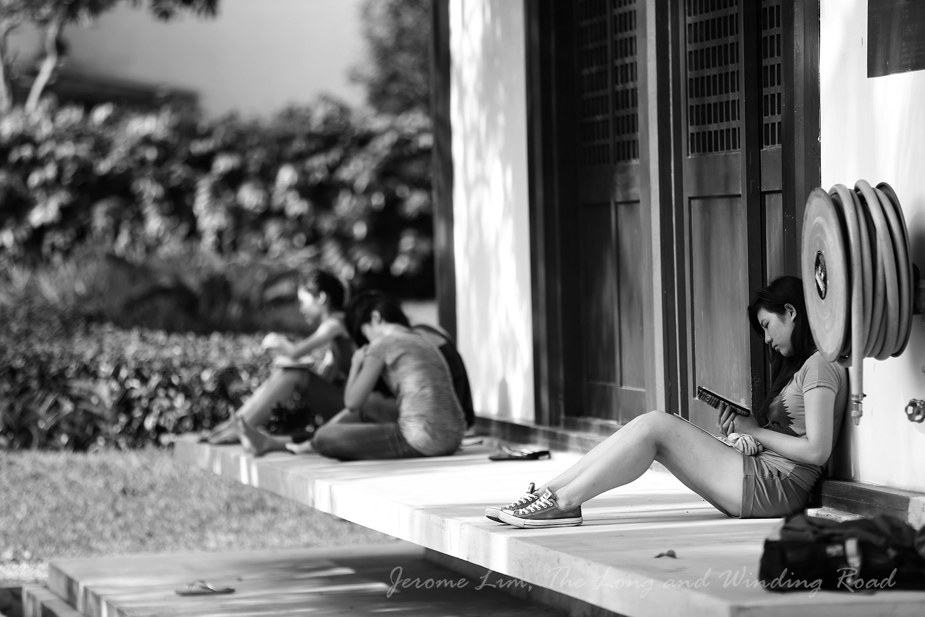 The serenely beautiful grounds of the cemetery draws many in search of a quiet place to read or to study.