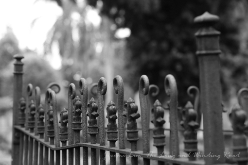 An iron fence around a grave.