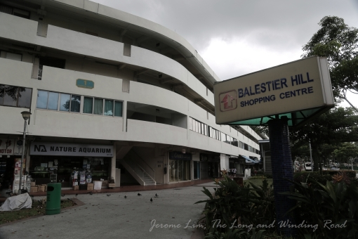 Balestier Hill Shopping Centre which was completed in 1977.