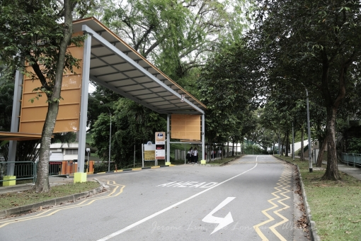 The road up to Balestier Hill where three schools were located. The hill was once used as a Teochew cemetery.