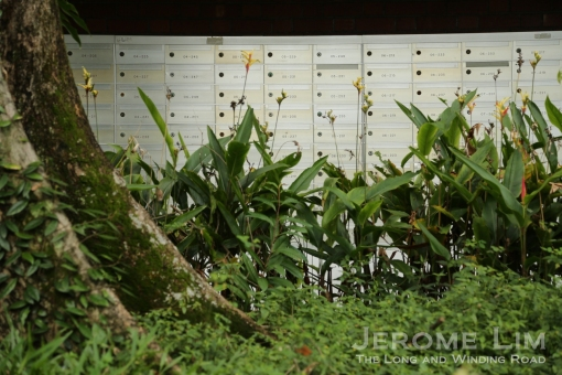 A jungle of letter boxes at 201 Pearl's Hill Terrace.