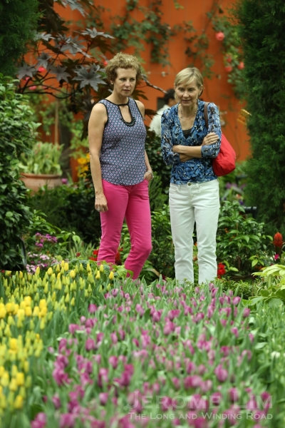 Visitors to the Flower Dome admiring the tulip field which has started to bloom.