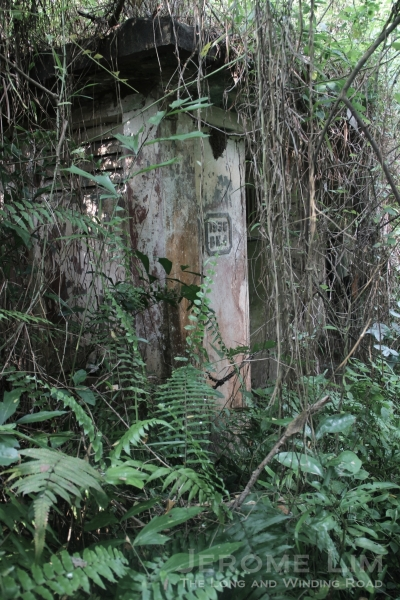 Access to the buildings is through vegetation that has them well camouflaged.