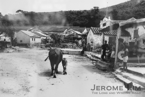 Coloane in the mid 20th century - taken off an exhibition of old photographs at the village square.