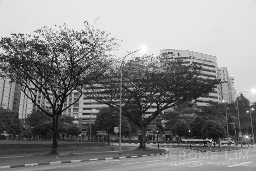 The corner where the church stood as seen today. Part of the grounds would be on what would today be the widened Sembawang Road. The corner at Sembawang Avenue and Sembawang Road is slated to be used for future development of sports and recreation facilities.