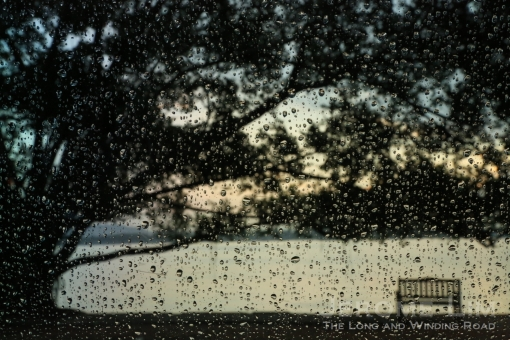A view through the rain, 7.06 am, 9 July 2013.