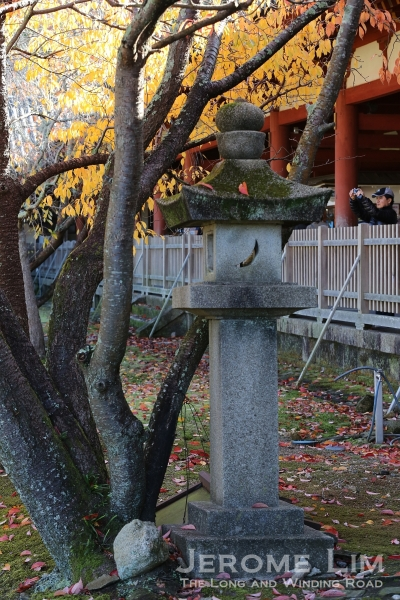The grounds of the Daibutsuden seen during Autumn.