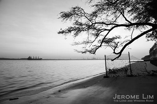 Jerome-2989