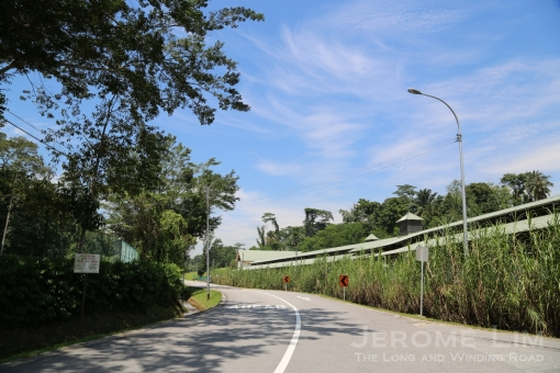 The area bounded by Thomson Road, Lornie Road and Whitley Road, hides some beautiful sights which has long resisted the advance of the concrete world.