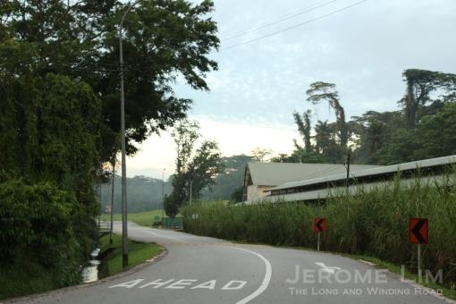 Another view of Jalan Mashhor.