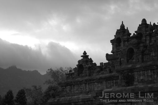 JeromeLim 277A6580