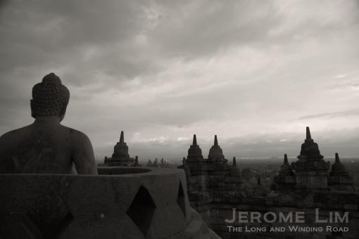 JeromeLim 277A6611