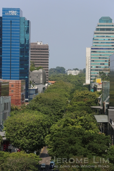 The most heavenly view one can get of Singapore's famous 'shopping mile', Orchard Road, is really from up above. It is from high up that one gets an amazing sight of the tree cover over the street which isn't quite noticeable at ground level.
