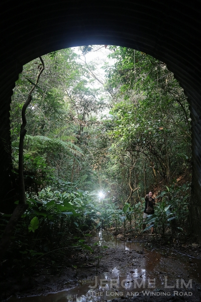 The light at the end of the tunnel under Clementi Road.