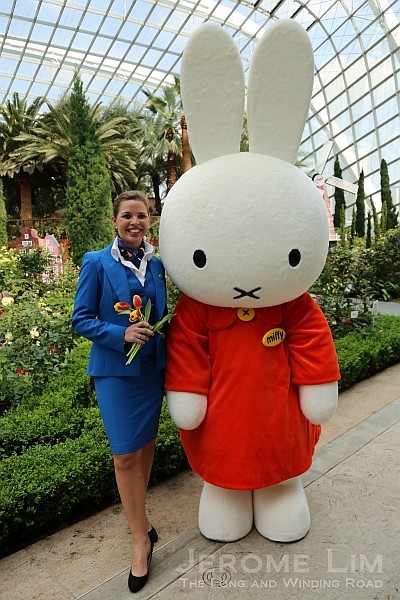 The Flower Dome goes Dutch with KLM and Miffy from today.