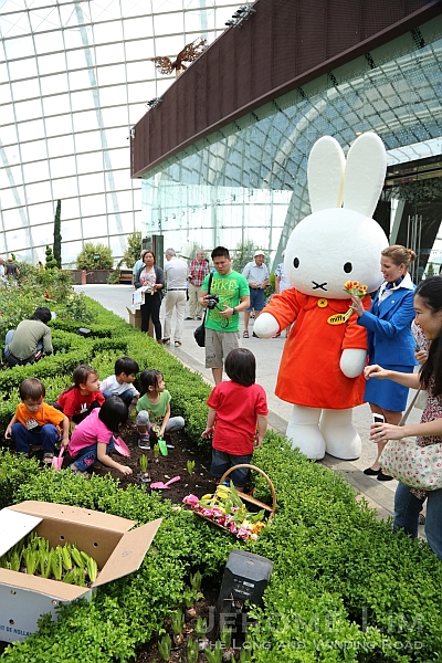Miffy oversees kids who had lots of fun planting tulip bulbs.