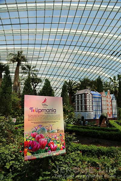 Tulipmania returns.