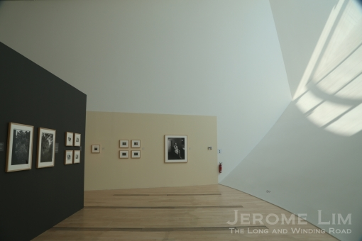 JeromeLim 277A4543