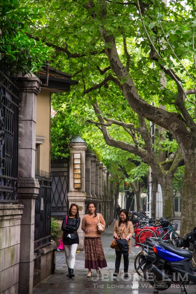 The tree-line streets of the former French Concession does seem to transport you far away from China.