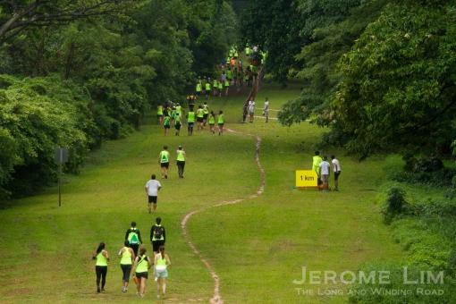JeromeLim-8088-2
