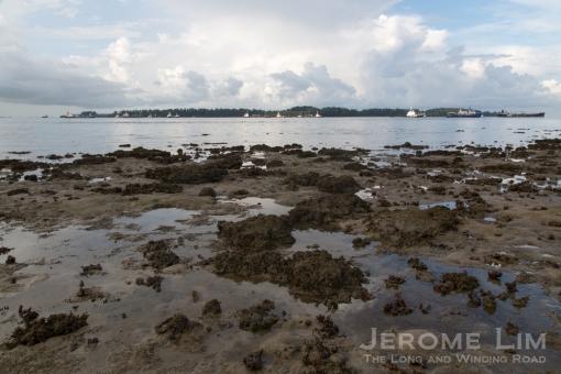 The expanded Pulau Sudong, as seen from Terumbu Pempang Laut.
