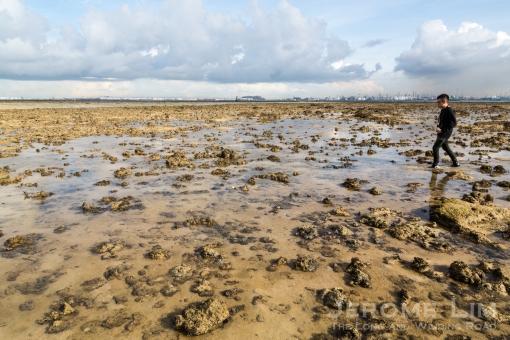 JeromeLim-3056-2 Terumbu Pempang Laut 20140601