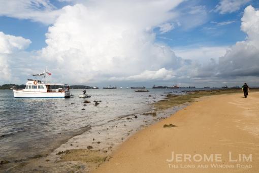 JeromeLim-3059 Terumbu Pempang Laut 20140601