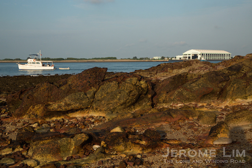 The island's rock formations are part of the  are Jurong Formation that marks the geology of much of Singapore's west.