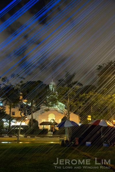 A view of the Orchard Road Presbyterian Church, through Cyanea.