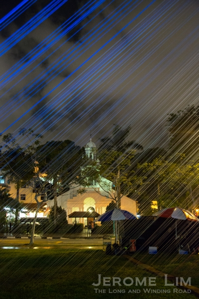 A view of the Orchard Road Presbyterian Church, through Cyanea.