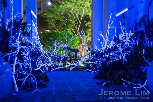 JeromeLim-9948