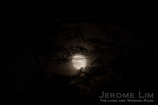 The full autumn moon graced the occasion.