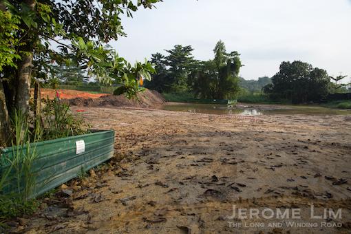 JeromeLim-0655