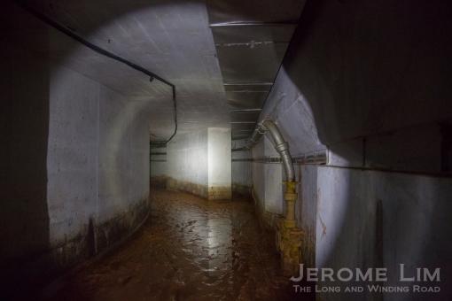 JeromeLim-8244
