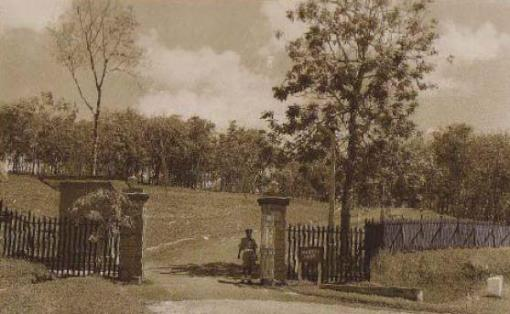 Nelson Gate