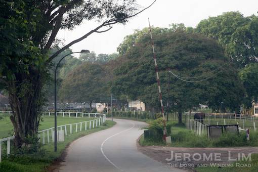A touch of the countryside nearby at the   Bukit Timah Saddle Club - which has been using part of the race course's estate since 1951.