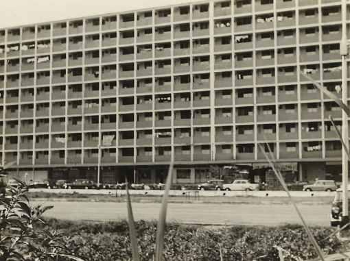 Block 74 Commonwealth Drive, 1968 (Courtesy of Jasmine Cheng).