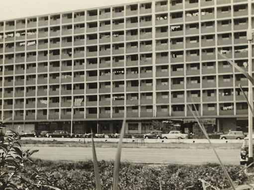 Block 74 Commonwealth Drive, 1968 (Courtesy of Jasmine Cheng).
