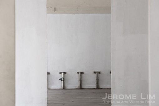 JeromeLim-3789