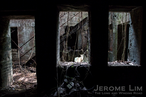 JeromeLim-4904