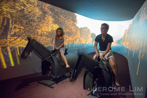 The exhibition gives visitors a chance to horse around.