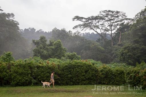JeromeLim-6821