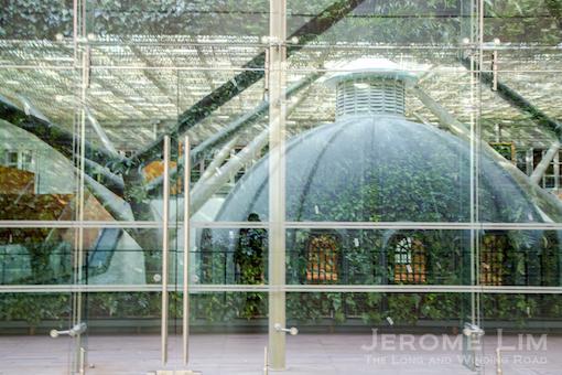 JeromeLim-7556