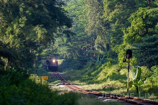 The Rail Corridor in greener days.