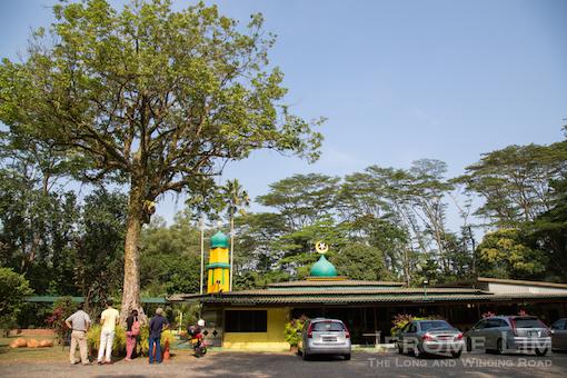 (50) Masjid Petempatan Melayu at Sembawang and its 6 decade old rubber tree.