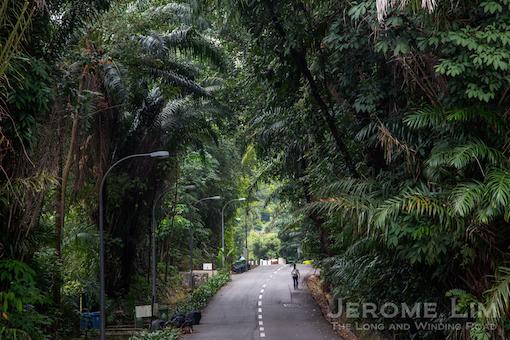 Ridout Road.